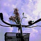 joy is a ride  by queenenigma