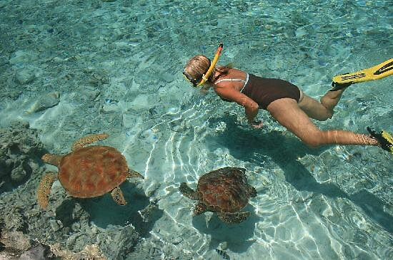 Best Water Shoes For Bora Bora