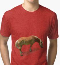 Horse from Kristberg (T-Shirt & iPhone case) Tri-blend T-Shirt