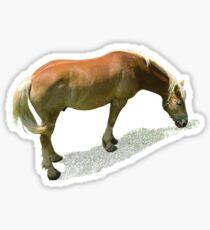 Horse from Kristberg (T-Shirt & iPhone case) Sticker