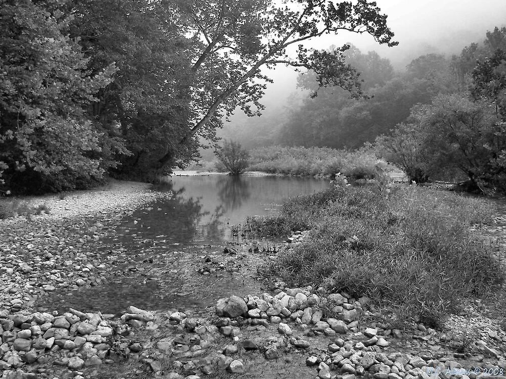 Misty River Morning III by MCAdams