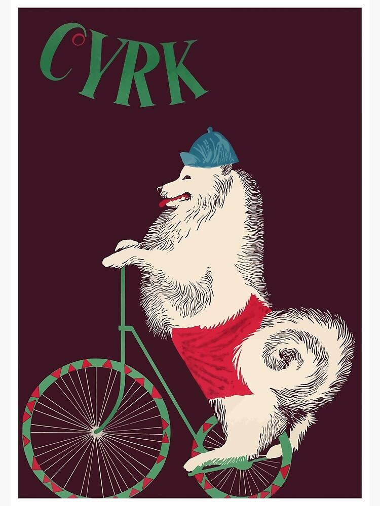 1965 Cyrk Cycling Dog Polish Circus Poster by retrographics