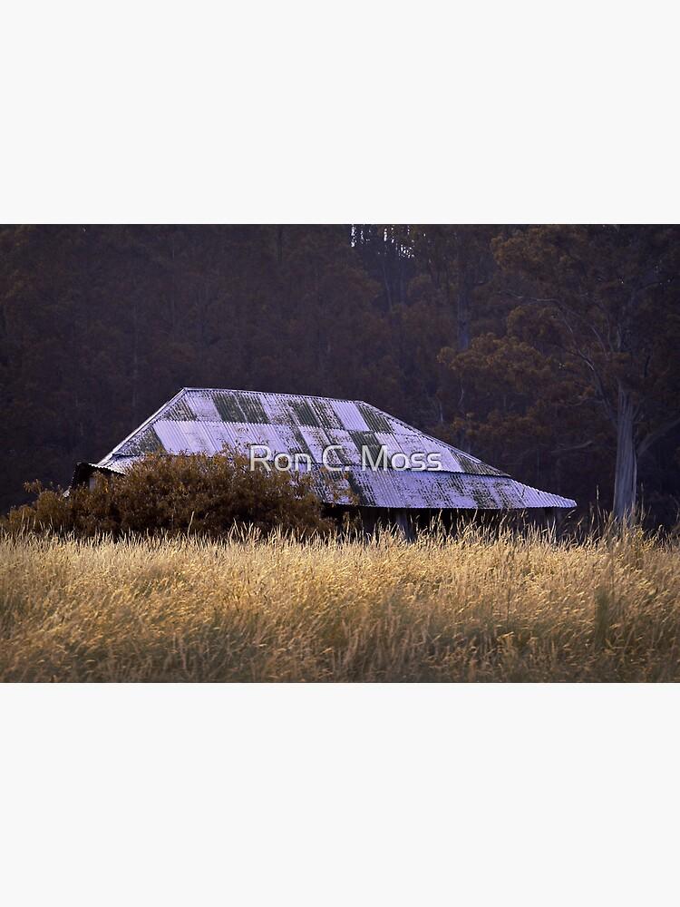 Farm House, near Judbury, Tasmania by ronmoss