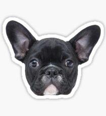 Oscar the French Bulldog Sticker