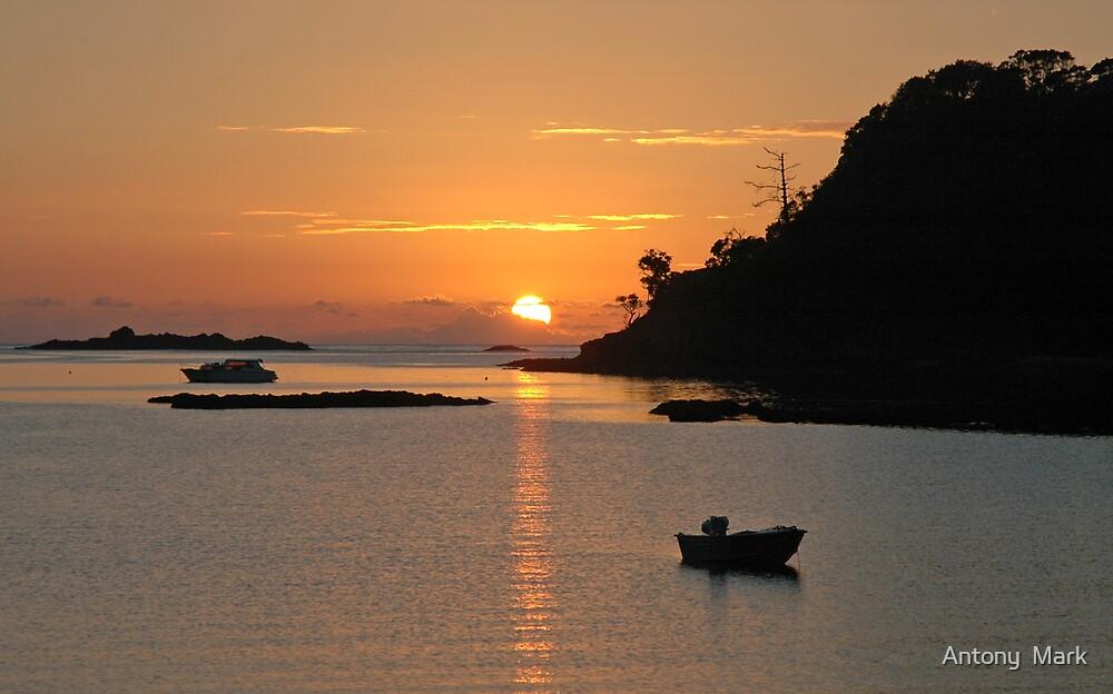 Sunrise over harbour by Antony  Mark