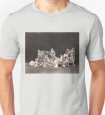 Kittens tangled in yarn T-Shirt