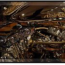 Chromed Harley-Davidson by Gracey