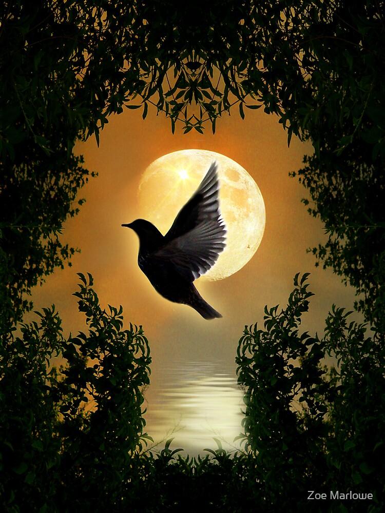 Spiritual Freedom By Zoe Marlowe Redbubble