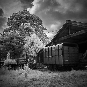 At the Farm by Banath