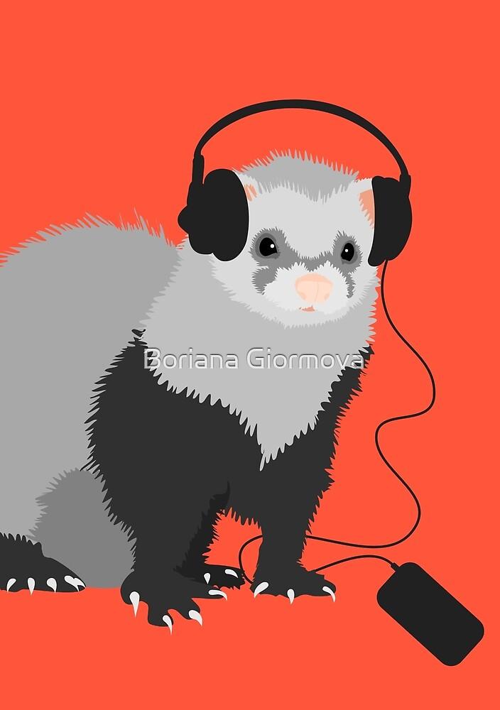 Funny Musical Ferret by Boriana Giormova