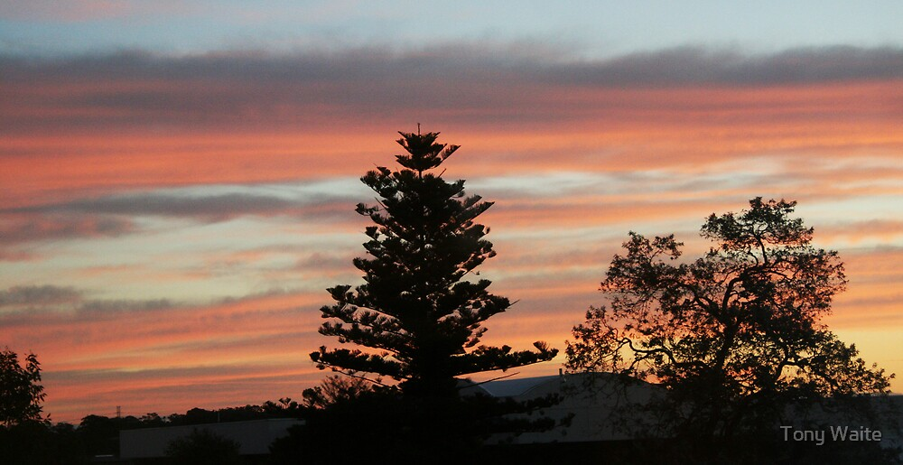Sunset over Thornleigh by Tony Waite
