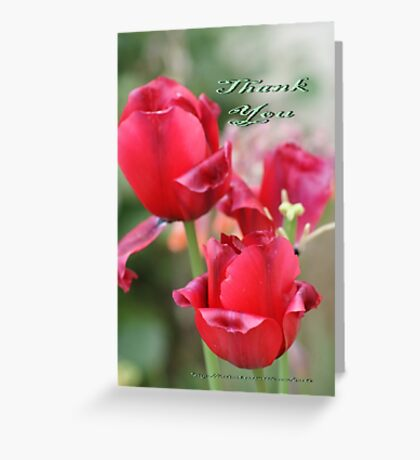 Thank You; Lei Hedger Photography La Mirada, CA USA Greeting Card