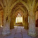 Inside Looking Out at Valle Crusis Abbey  by trish725