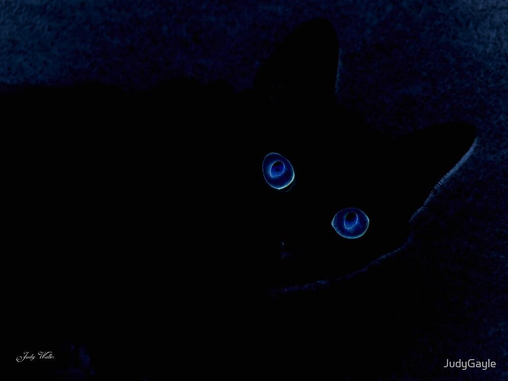 Cat Eyes #2 by Judy Gayle Waller