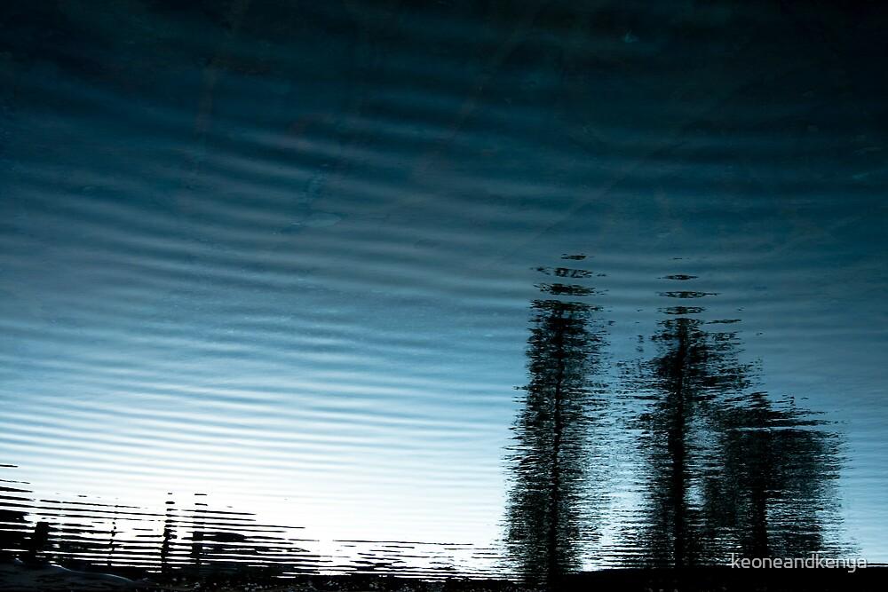Tidal Trees by keoneandkenya