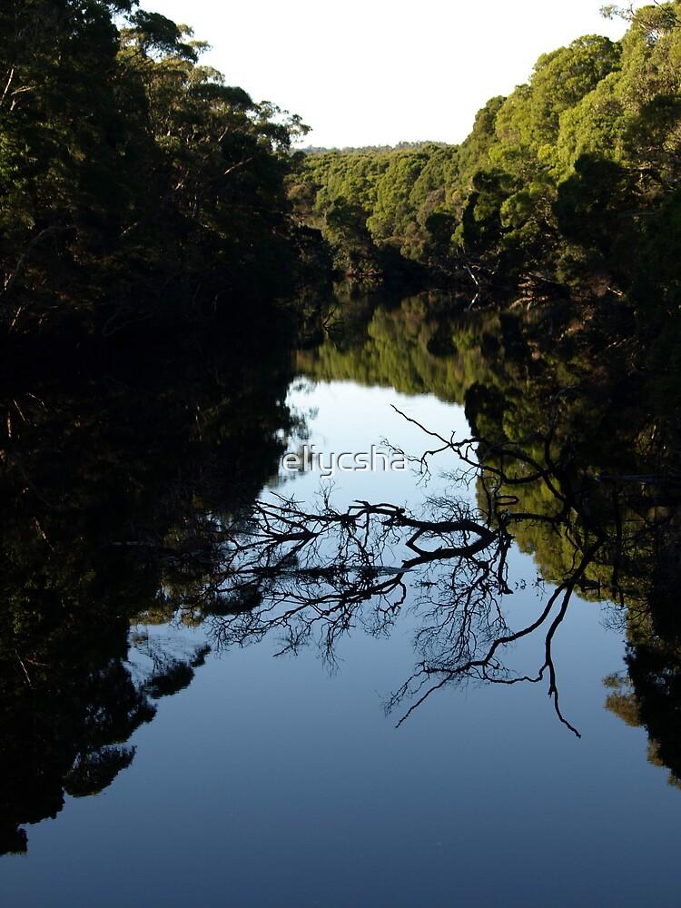 Henty River by eliycsha