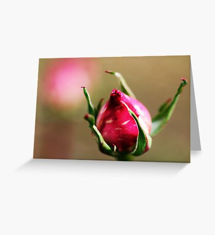 Kabloom Greeting Card