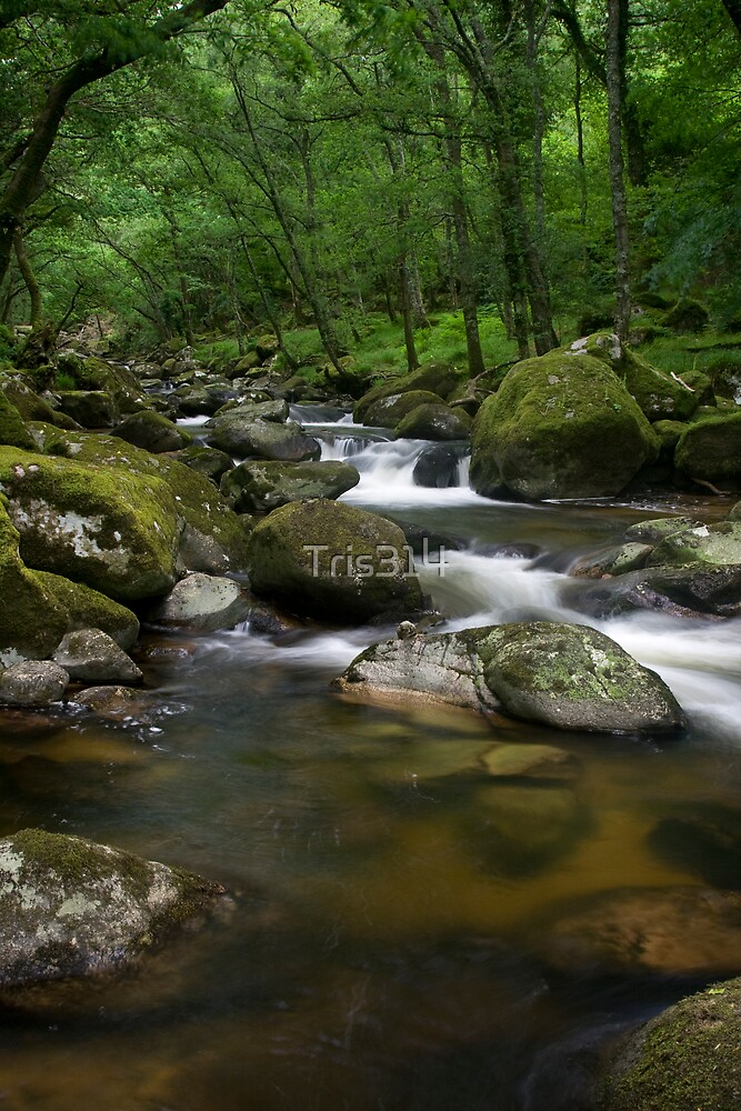 Waters Rest by Tris314