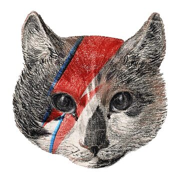 Rock the Bowie Cat by savage-wear
