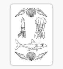 Sea Life Flash Sticker