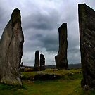 The Calanish stones by Terry Mooney