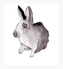 Aquarell Kaninchen Fotodruck