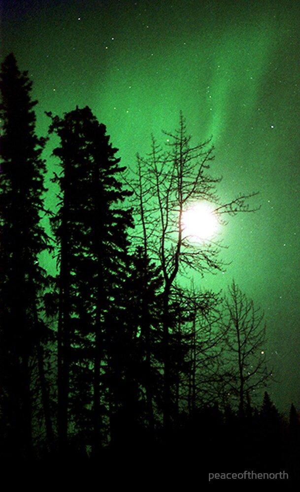 Northern Moonlights by peaceofthenorth