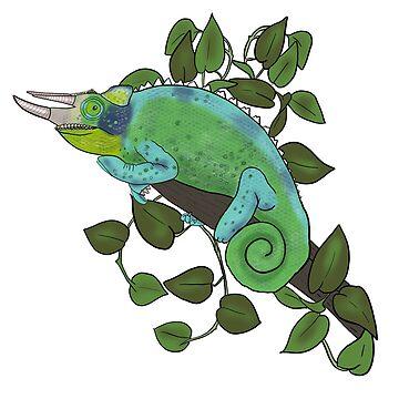 Jackson Chameleon by ketchambr