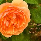 O Give Thanks... by Jonicool