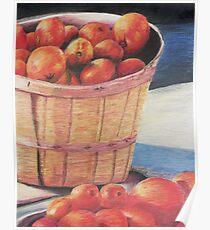 Farmer's Market Produce Poster