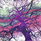 Star Baum by Shawna Rowe
