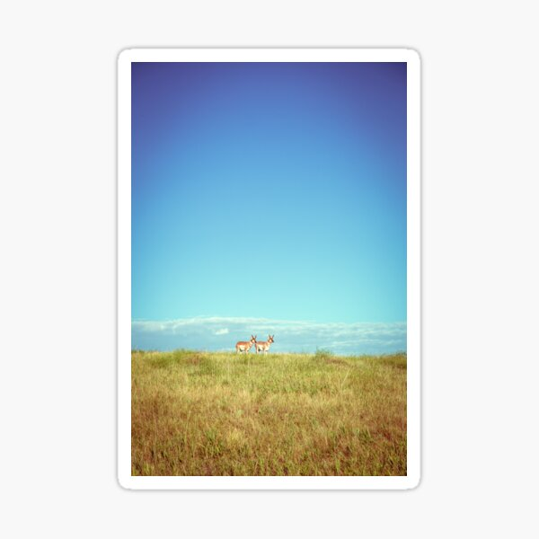 Badlands Antelope Sticker