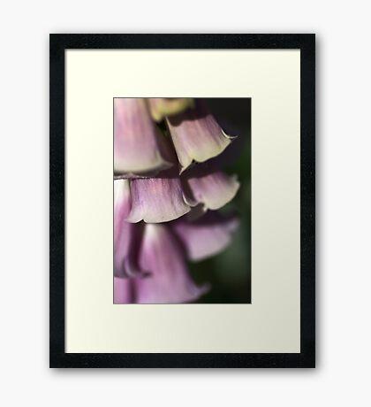 Bells of Nature Framed Print