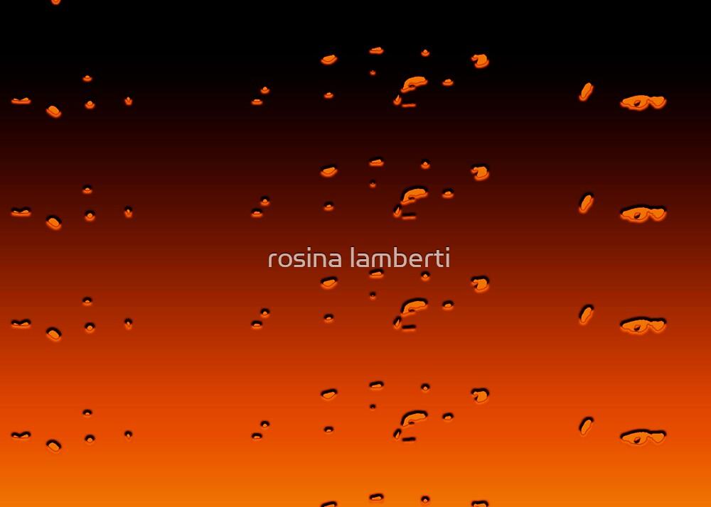 Orangey by Rosina  Lamberti