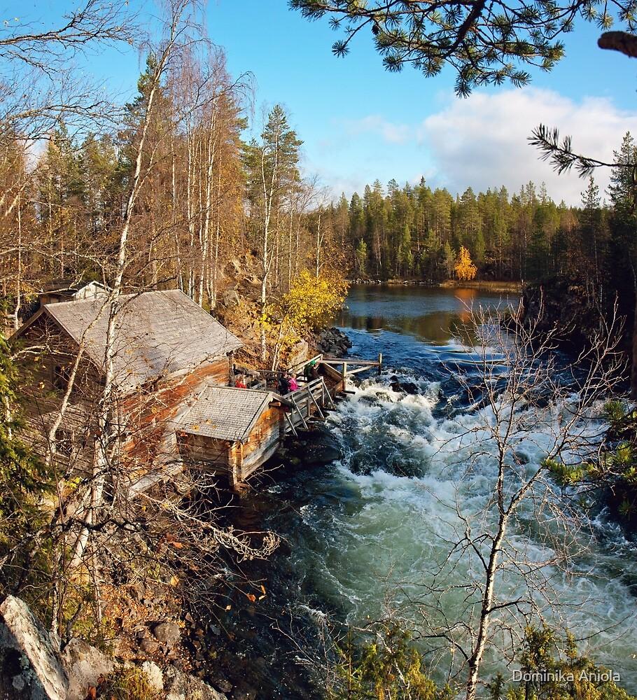 Suomi by Dominika Aniola