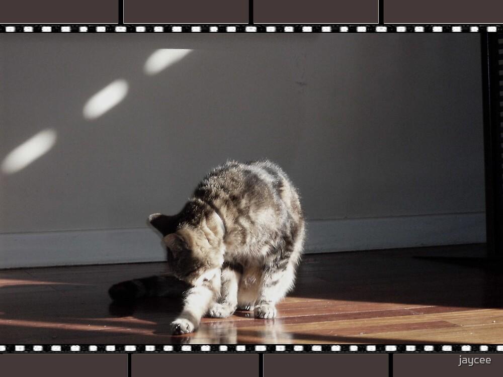 The Sparkle Movie by jaycee
