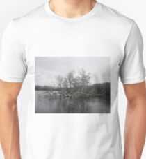 Snow Sprinkled Lake Tree T-Shirt
