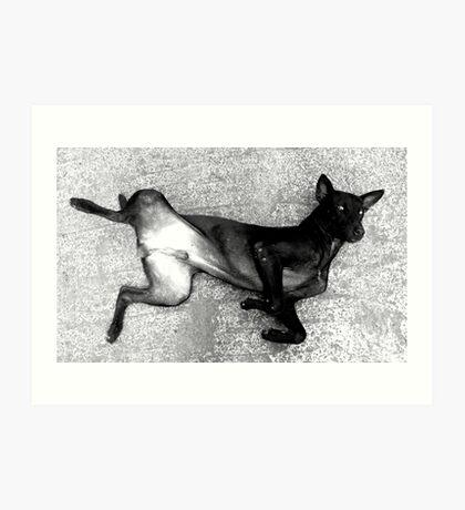 Faithful black & white Art Print
