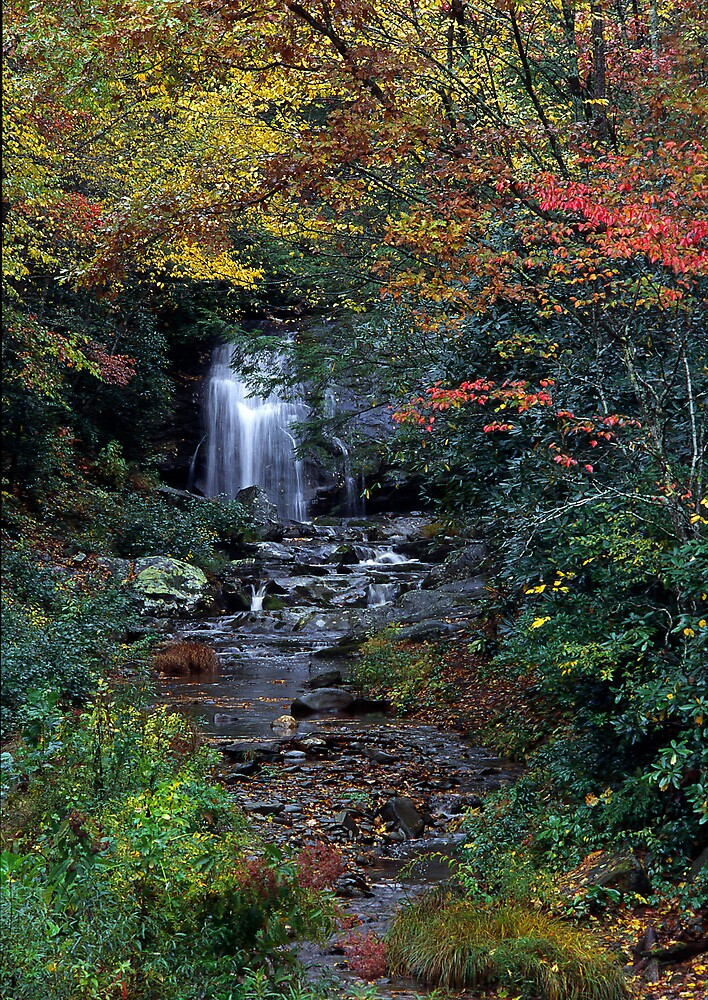 Meigs Falls /Great Smoky Mountain National Park by GaryGlass