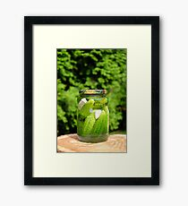 Pickled organic cucumber Framed Print