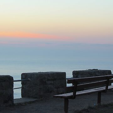 Sutro's View by Lazzolino