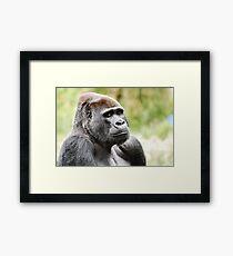 Oscar Jonesy Framed Print