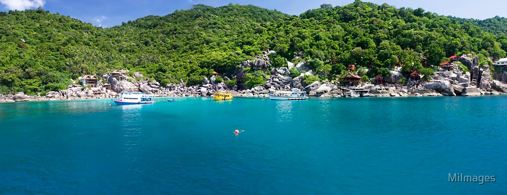 Panorama of Koh Tao by MiImages