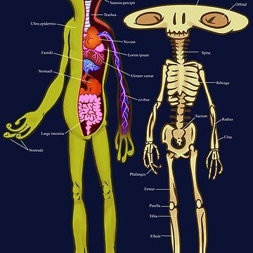 Alien Anatomy - Cutaway Diagram by ThatBenWalker