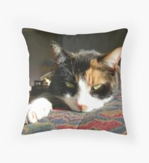 I am not a pussy! Throw Pillow