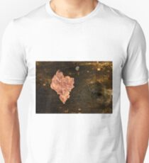 Assimilated T-Shirt