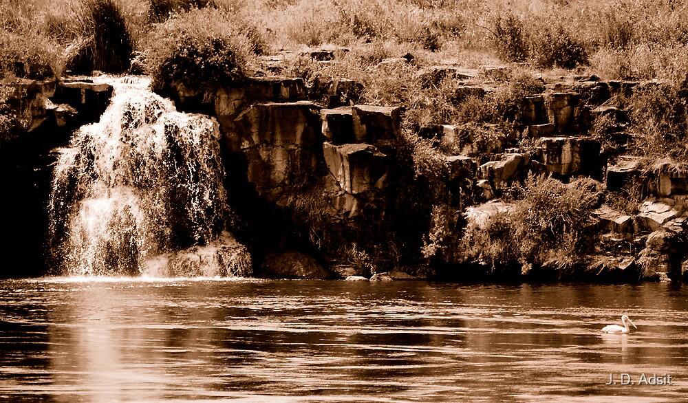 Sepia Falls by J. D. Adsit