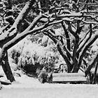 Memorial Park Blackeath in Heavy Snow by Geoff Smith