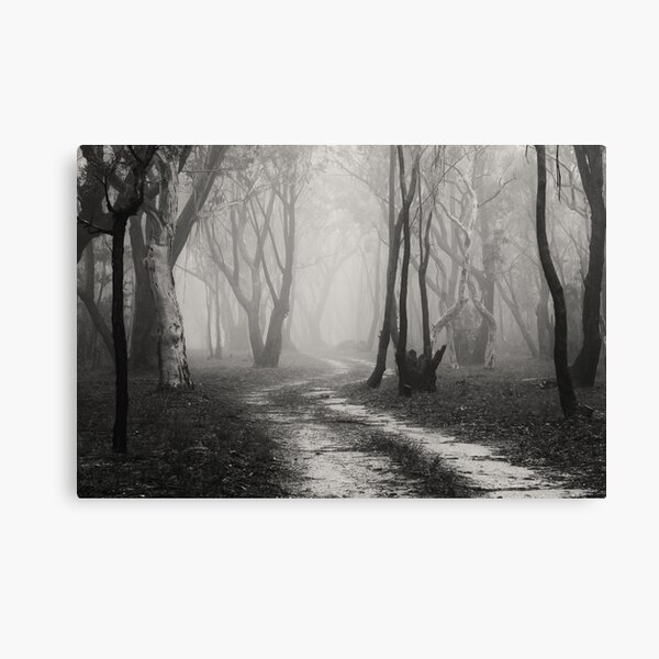 Twin Falls Trees in the Mist Canvas Print