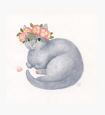 Flower Cat - Grey With Pink Photographic Print